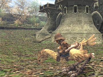 A Tarutaru digging with his chocobo.